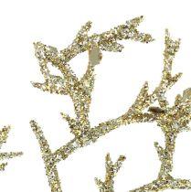 Korallihaara kiillolla vaalean kultaa 3kpl