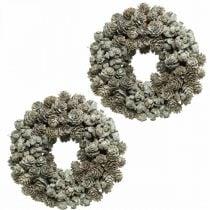 Deco seppeleen käpyjä Lehtikuusi ja sypressi Valkoinen, Glitter Ø20cm 2kpl 2kpl