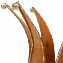 Krone Edelrost Gold Ø6.5 / 8.5cm 2kpl sarjassa