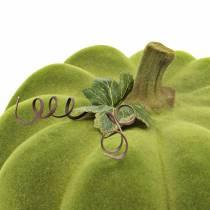 Koristeellinen kurpitsa Flocked Moss Vihreä 32cm