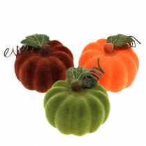 Mini kurpitsa flokkaus oranssi, vihreä, punainen Ø9cm 6kpl