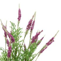 Laventelipensas violetti 43cm