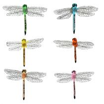 Sudenkorentoja kiinnikkeessä 6,5 cm x 8,5 cm 12 kpl