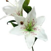 Lilja valkoinen 66cm