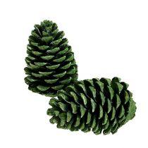 Maritima tötteröt 10cm - 16cm vihreä himmeä 12kpl