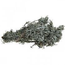 Deco Twigs jäkälät Twigs sammal Twigs Lichens Natural Deco 750g