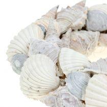 Simpukkaseppele valkoinen Ø14cm