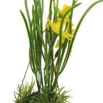 Narsissi munankuoressa ripustettavaksi Keinotekoinen keltainen 25cm