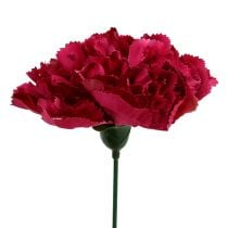 Neilikan vaaleanpunainen Ø9cm L11cm 12kpl