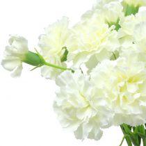 Neilikka valkoinen 64cm 4kpl