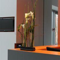 OASIS® Black Table Deco Medi plug-in vaahtomuovi 4kpl 4kpl