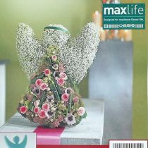 Kukka vaahtoenkeli pystyasennossa 45cm x 34cm