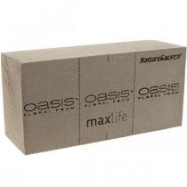 OASIS® NatureSource tiili pistokevaahto 23cm×11cm×7cm 10kpl 10kpl