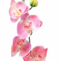 Orkidea Phalaenopsis keinotekoinen vaaleanpunainen 60cm