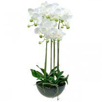 Keinotekoinen orkideat ruukku valkoinen keinotekoinen kasvi 63cm