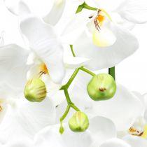 Keinotekoiset orkideat ruukku valkoinen 80cm