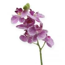 Orkidea kimalluksella, vaaleanpunainen 35cm