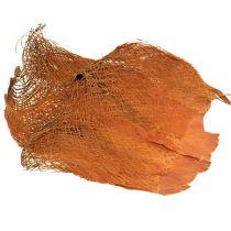 Palmukuitu luonnollinen 1kg