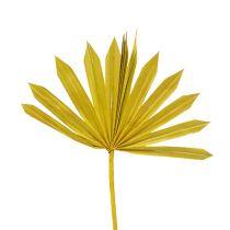 Palmspear Sun mini keltainen 50kpl