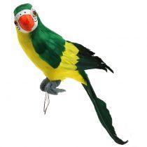 Koristeellinen papukaija vihreä 44cm