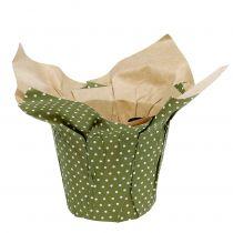 Paperiruukku kuviolla vihreä-valkoinen Ø9,5cm 12kpl
