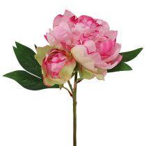 Pionit, vaaleanpunainen, L30cm 2kpl
