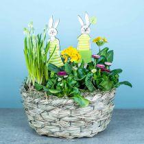 Heinäkori, koristeellinen kori, kasvi kori, kukka kori soikea 3 kpl sarja