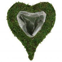 Kasvi Heart Moss 28cm x 23cm