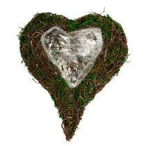Istuttaminen Sydän kuin kukka-asetelma pohja 30x35cm H8cm