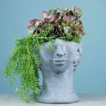 Kasvien pään rintakuva betonista harmaan H23.5cm istutusta varten