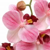 Keinotekoinen orkideahaara Phaelaenopsis Pink H49cm