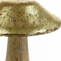Sieni Mango Wood Gold, Natural Deco Mushrooms Large Ø12cm H15cm 2kpl 2kpl
