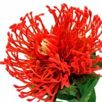 Protea keinotekoinen punainen 73cm