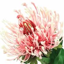 Protea keinotekoinen vaaleanpunainen 73cm