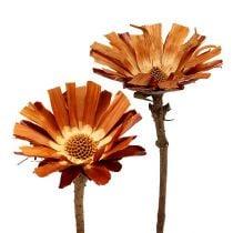 Repens ruusukkeet super 10 - 12cm 20kpl