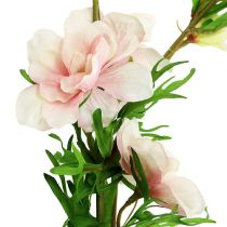 Larkspur Delphinium vaaleanpunainen L95cm