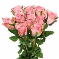 Ruusu vanha ruusu 42cm 12p
