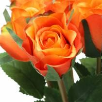 Ruusuoranssi 42cm 12kpl
