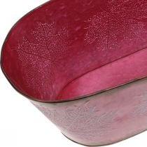 Kulho, jossa on lehtikoriste, istutin, syksyn koriste, metallipotti viininpunainen L38cm H15cm L38cm H15cm