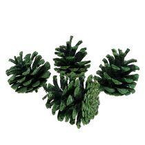 Musta männynkävy vihreä himmeä 5-7cm 1kg