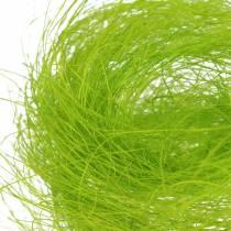 Sisal kevään vihreä koriste ruoho 500g