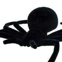 Hämähäkki musta 16cm parven