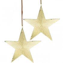 Kultainen tähti, adventtikoriste, koriste riipus jouluksi 12×13cm 2kpl.