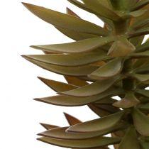 Mehevä haara vaaleanruskea vihreä 48cm