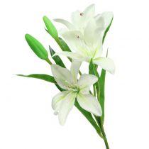 Lilja valkoinen 58cm