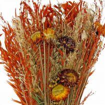 Kuivatut kukat kukkakimppu oranssi sekoitus 42cm