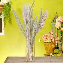 Kuivatut kukat Exotics White-Nature Mix, kuivakukkasekoitus, kuivakukkasekoitus