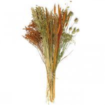 Kuivatut kukat DIY-sarja kuivattuun kukkakimppuun oranssi 60cm