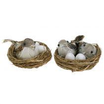 Linnunpesä munilla ja linnulla 6kpl
