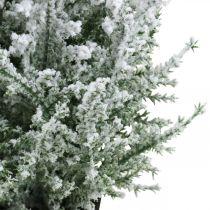 Keinotekoinen kataja ruukussa Luminen tekokasvi H47cm